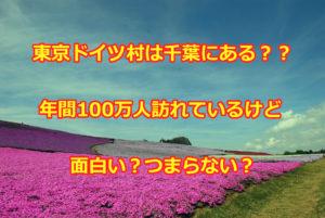 東京ドイツ村はつまらない?